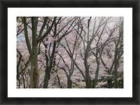 landscape_2_0949 Picture Frame print
