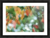 landscape_2_1026 Impression et Cadre photo