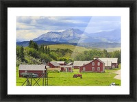 Bar U Ranch National Historic Site; Longview, Alberta, Canada Picture Frame print