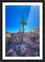 Natures Cross Picture Frame print