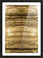 Paradoxical Forest Picture Frame print
