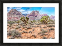 JoshuaTree Picture Frame print