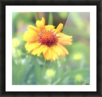 Morning Beauty Picture Frame print