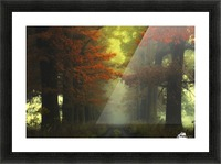 Shaman_s road on the other side Picture Frame print