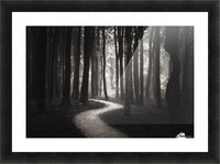 Snakes path Picture Frame print