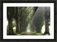 Tunnel of inner calmness Picture Frame print