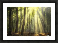 When the sun touch your heart Picture Frame print