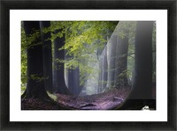 Alley of replenishing energy Picture Frame print