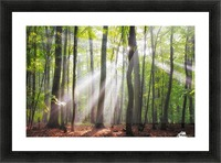 When the sun shine on your way Picture Frame print