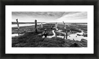 Coastal Marshland Picture Frame print
