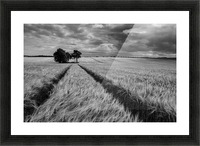 Field Shapes 2 Picture Frame print