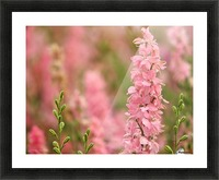 Dreamy Picture Frame print