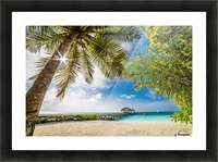 Palm and tropical beach Picture Frame print