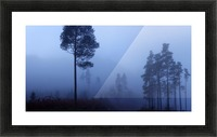 Early Morning Mist Picture Frame print