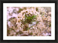 Spring clock Picture Frame print