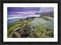 Medusa Picture Frame print