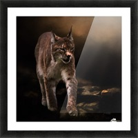 Into The Light by Jordan Blackstone Picture Frame print