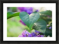 Lilac hearts Picture Frame print