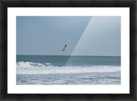 Seagull flying over waves Picture Frame print