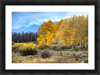 Fall Holdouts in Jackson Hole Picture Frame print
