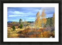 Willow Flats   Jackson Hole Picture Frame print