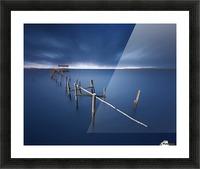 Carrasqueira azul Picture Frame print