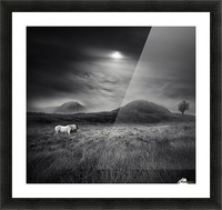 Strange Place To Be Picture Frame print