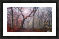 Walking the old path. Picture Frame print
