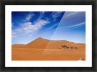 Desert Life .. Picture Frame print