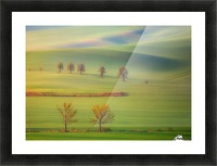 Fields Picture Frame print