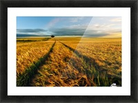 Countryside Picture Frame print