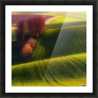 Green fields Picture Frame print