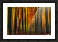Autumn falls Picture Frame print
