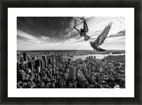 Pigeons on the Empire State Building Picture Frame print