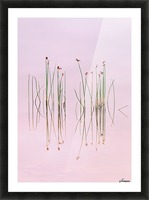 Reflection of Serenity Picture Frame print