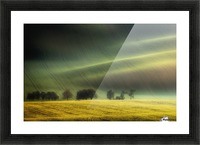 spring fields Picture Frame print