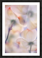 Under the skirts of flowers Picture Frame print