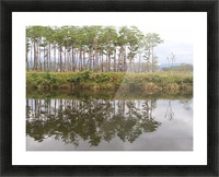 Sky, Water & Trees Picture Frame print