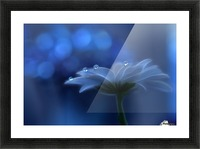 Space Dreams... Picture Frame print