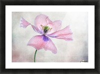 Pastel poppy Picture Frame print