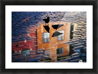 Pigeons Picture Frame print