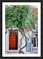 the door mykonos  Picture Frame print