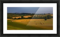 East Devon balescape Picture Frame print