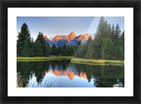 Beavers View of Tetons Picture Frame print