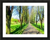 Summer Avenue Picture Frame print