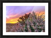 Barrel_of_Sun Picture Frame print