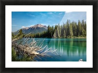 Summer Bow river Picture Frame print