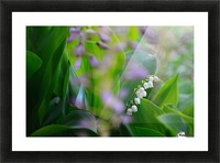 Spring dream Picture Frame print