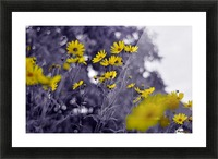 Still yellow Picture Frame print