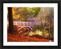 Autumn Colors II Picture Frame print